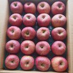 蜜たっぷりのふじりんごが10kgも!ふるさと納税から届きました。