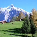 スイス人から学ぶ、本当に豊かな生き方とは?
